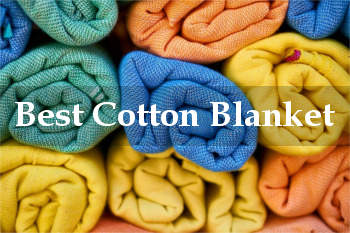 best cotton blanket reviews