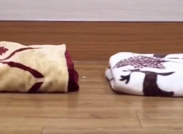 flannel or fleece sheets better
