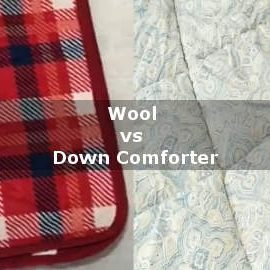 wool vs down comforter