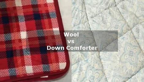 wool vs down comforter